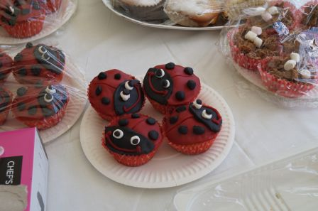 Halyna's ladybird cakes are so realistic